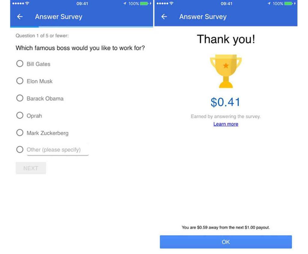 Google Opinion Rewards Example